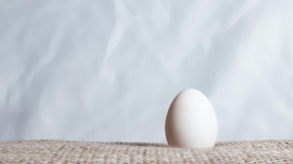 Last Words Egg Foo Young