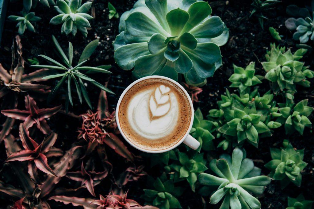 Botanical Coffee Decoration