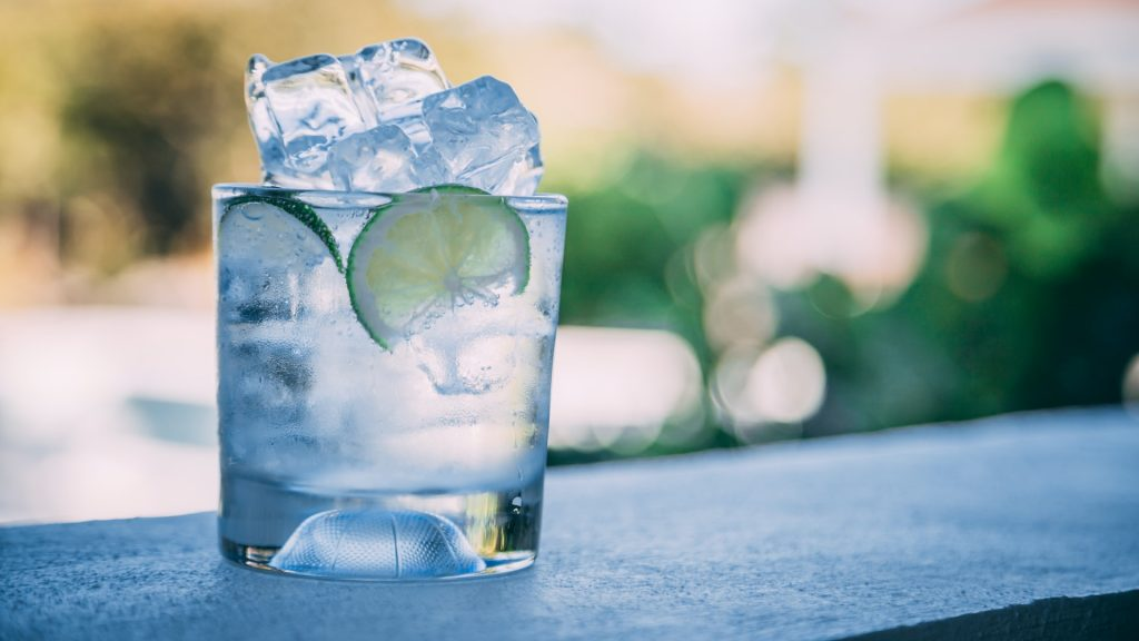 Best Gin And Tonic Recipe Simple