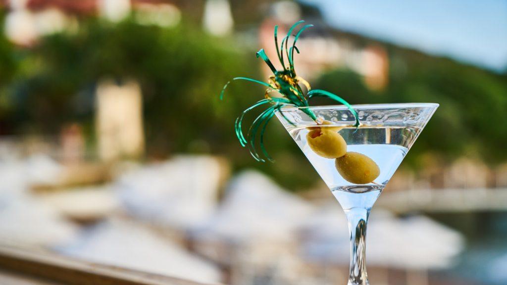 Gin Martini Cocktail Classic
