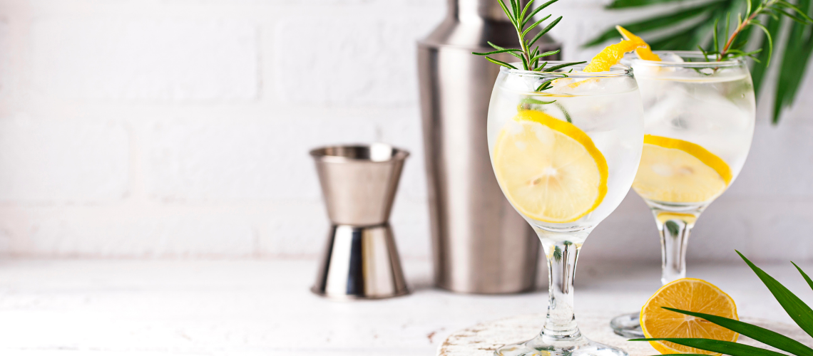 Different Types of Gin Explained – A Complete Gin Guide