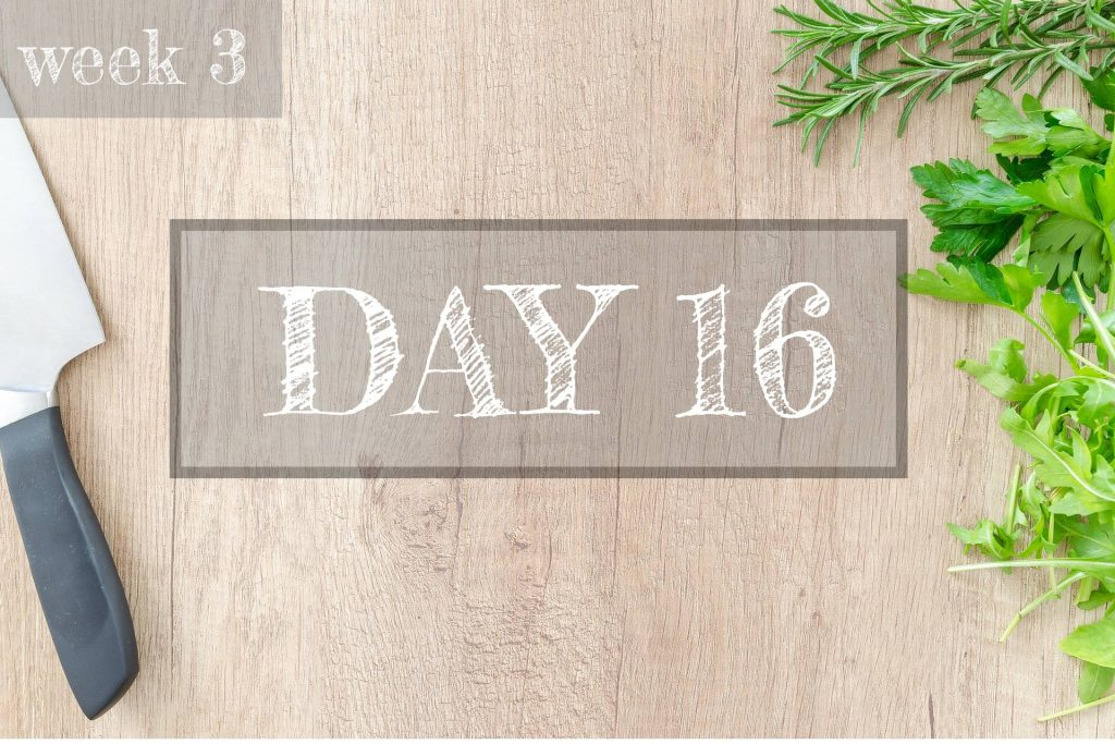 Day 16 of Healthy Meal Plan – What to eat today?