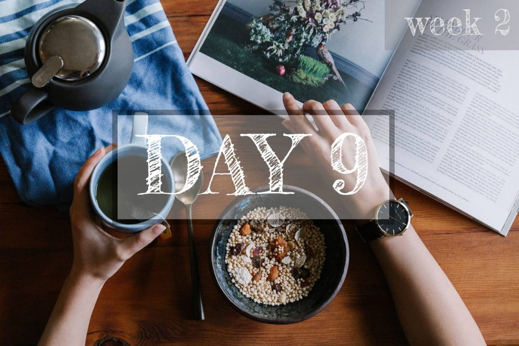 Day 9 of Healthy Meal Plan – What to eat today?